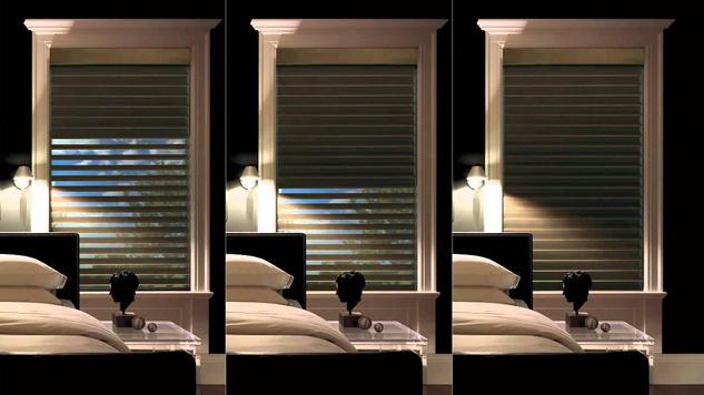 Dual Function Window Treatment Hunter Douglas San