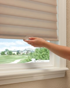 LiteRise Cordless Window Treatment Lifting Option